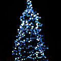 Blue Christmas Lights by Terry DeLuco