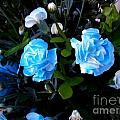 Blue Carnations by Vladimir Berrio Lemm