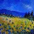 Blue Conflowers 454150 by Pol Ledent