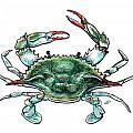 Blue Crab by Stephen Paul Herchak