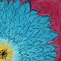 Blue Daisy by Dana Strotheide