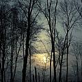 Blue Daybreak by Karol Livote