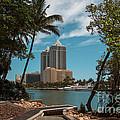 Blue Diamond Condos Miami Beach by Rene Triay Photography