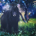 Belgian Sheepdog Art by Wolf Shadow Photography