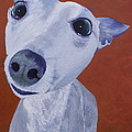 Blue Dog by Trish Campbell