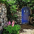 Blue Door by Chris Fleming
