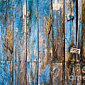 Blue Door by Delphimages Photo Creations
