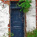 Blue Door by Lynn Sprowl