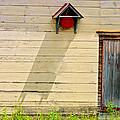 Blue Door by Marcia Lee Jones