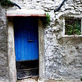 Blue Door  On Rustic House by Lainie Wrightson