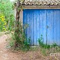 Blue Doors And Yellow Flowers by Ingela Christina Rahm