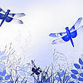 Blue Dragonfly Art by Christina Rollo