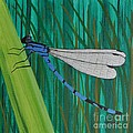 Blue Dragonfly by Sally Rice