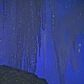 Blue Drip by Susan Herber