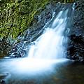 Blue Falls Off The Beaten Path by Bryant Coffey