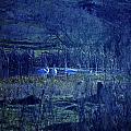 Blue Fantasy Swans by Gloria De los Santos