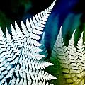 Blue Fern Leaf Art by Christina Rollo