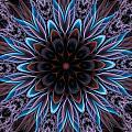 Blue Flower by Lilia D