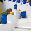 Blue Flower Pots by Jim  Wallace