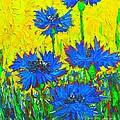 Blue Flowers - Wild Cornflowers In Sunlight  by Ana Maria Edulescu