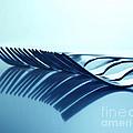 Blue Forks by Andreas Berheide
