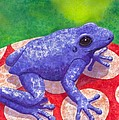 Blue Frog by Catherine G McElroy