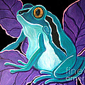 Blue Frog Purple Flower by Nick Gustafson