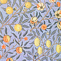 Blue Fruit by William Morris