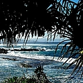 Blue Hawaii by Karen Wiles