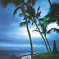 Blue Hawaii With Planets At Night by Connie Fox
