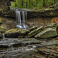 Blue Hen Falls by Torrey McNeal