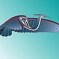 Blue Heron Flight by Fred Croydon