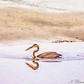 Blue Heron With Fish by Natalie Rotman Cote