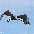 Blue Herons Last Fly By by Tom Janca
