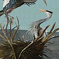 Blue Herons by Naomi McQuade