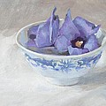 Blue Hibiscus Flower In Chinese Cup by Anke Classen