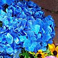 Blue Hydrangea  by Becky Bunting