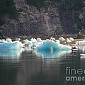 Blue Ice Flows by Bev Conover