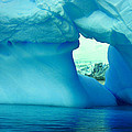 Blue Iceberg Antarctica by Amanda Stadther