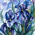 Blue Iris by Barbara Jewell