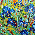 Blue Iris by Karen Tarlton