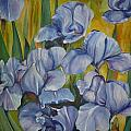 Blue Irises by Cate Evans