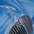 Vintage Blue Jag