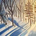 Blue Jay Winter by Christine McNulty