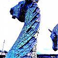 Blue Kelpie by Nik Watt