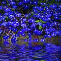 Blue Lobelia by Joyce Dickens