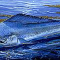 Blue Mahi Off0071 by Carey Chen