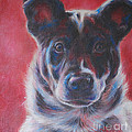 Blue Merle On Red by Kimberly Santini