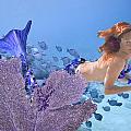 Blue Mermaid by Paula Porterfield-Izzo