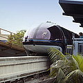 Blue Monorail In The Station Disneyland 01 by Thomas Woolworth